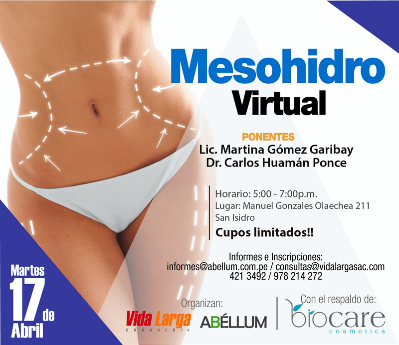 Mesohidro Virtual